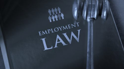 The Best Way To Obtain The Very Best Employment Law Guidance