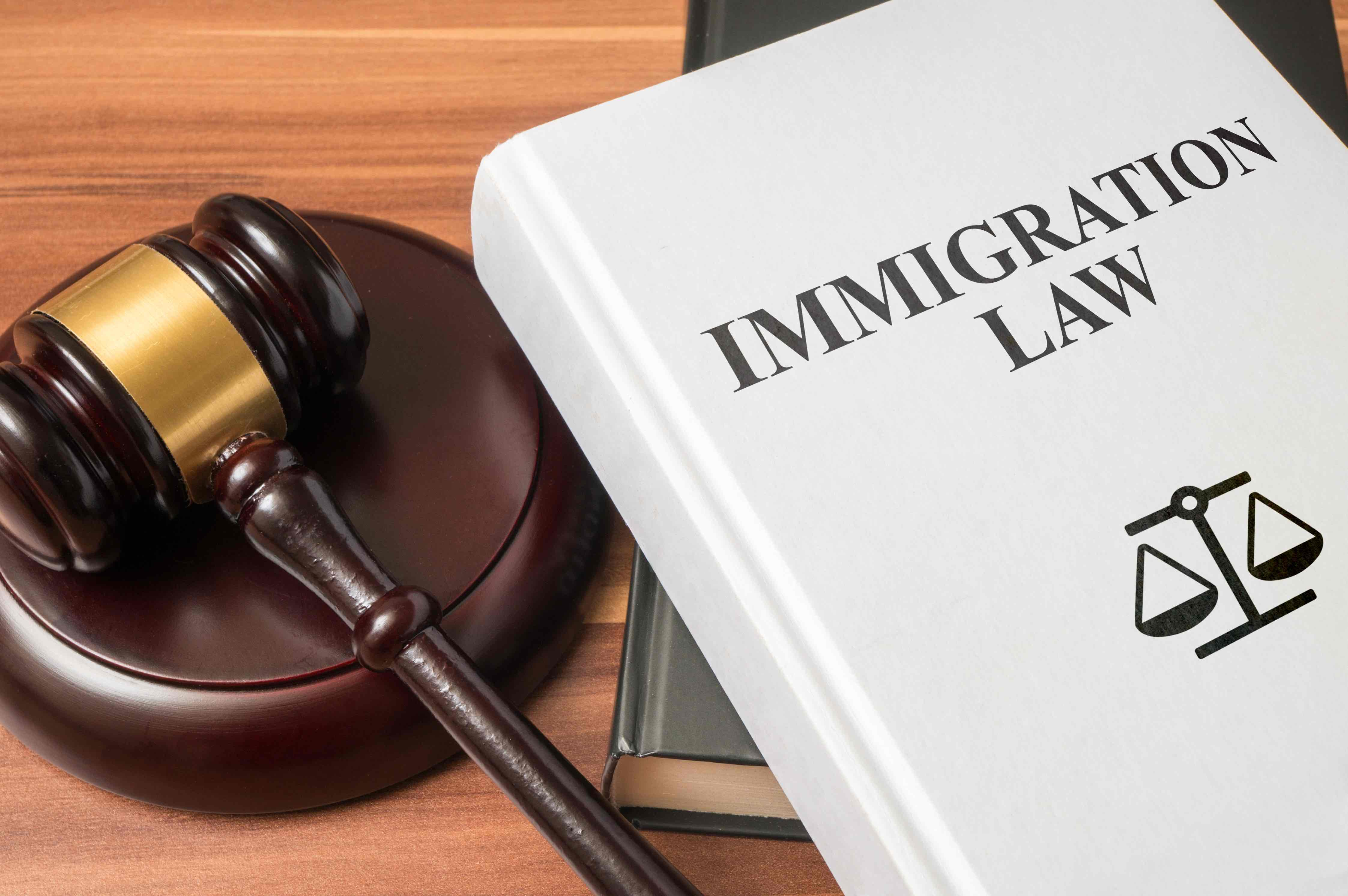 US Citizenship And Immigration History